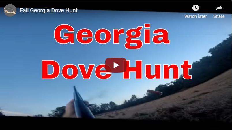 Flashback to a Georgia DoveHunt