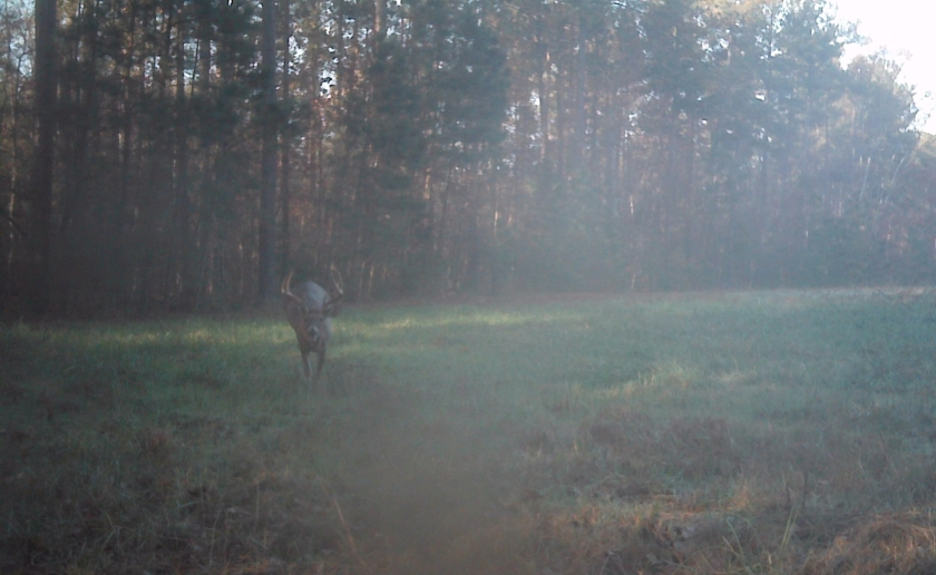 Whitetail Guru Hunting Podcast Episode 44