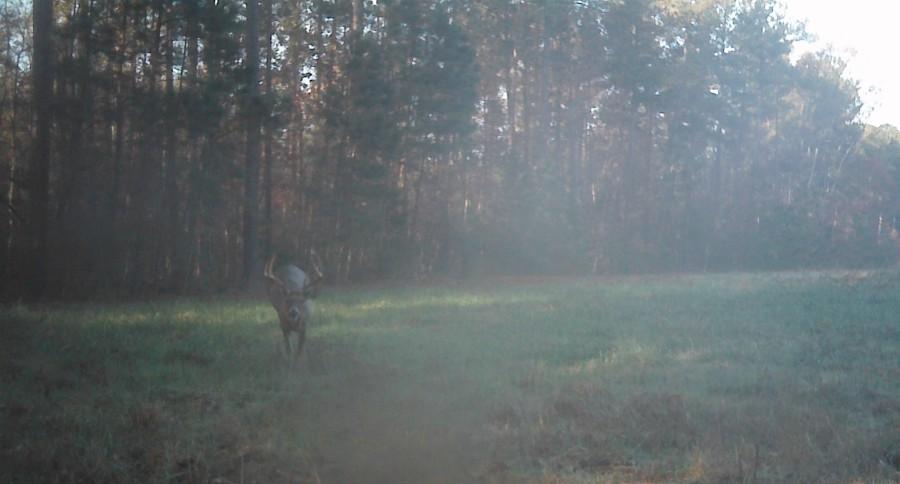 Whitetail Guru Hunting Podcast #44: (Part 2) Rut Update, Lockdown, Late SeasonTactics
